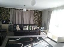 Picture of House requiring House Sitter at Kiwi House Sitters, New Zealand. Location Inglewood, Inglewood 4430