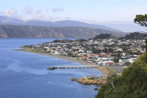 House Ad Seatoun Wellington 6022 Kiwi House Sitters