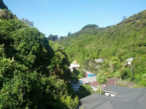 House Ad Aro Valley Wellington 6021 Kiwi House Sitters