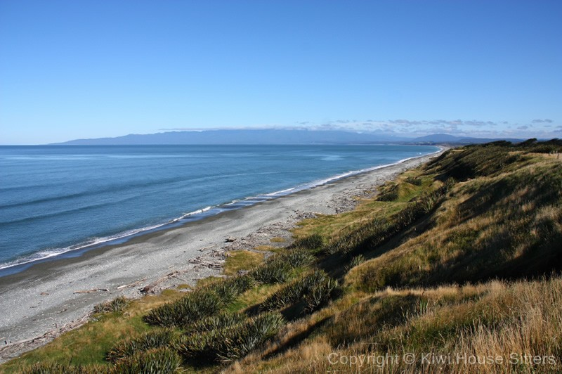 Southland New Zealand  city images : house sitting new zealand southland 02 l