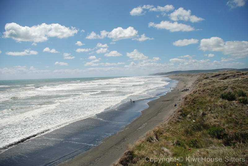 waikato view house sitters available to mind houses in waikato Hot Water Beach Waikato